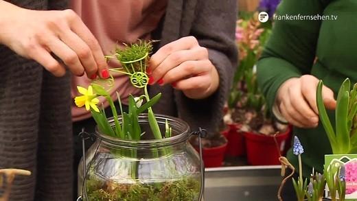Blatt und bl te herbstliche grabbepflanzung franken for Adventsdekoration fensterbank